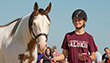 Animal Science, Food and Nutrition - College of Agriculture - horse and rider